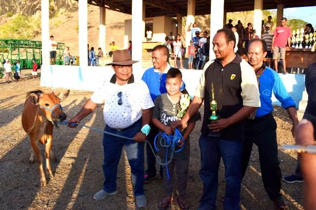 Joki Kuda Indonesia dan Timor Leste Berlaga di Tanjung Bastian-FORTUNA-NTT